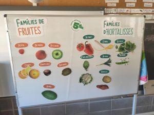 """Taller fruites i hortalisses a 3r"""